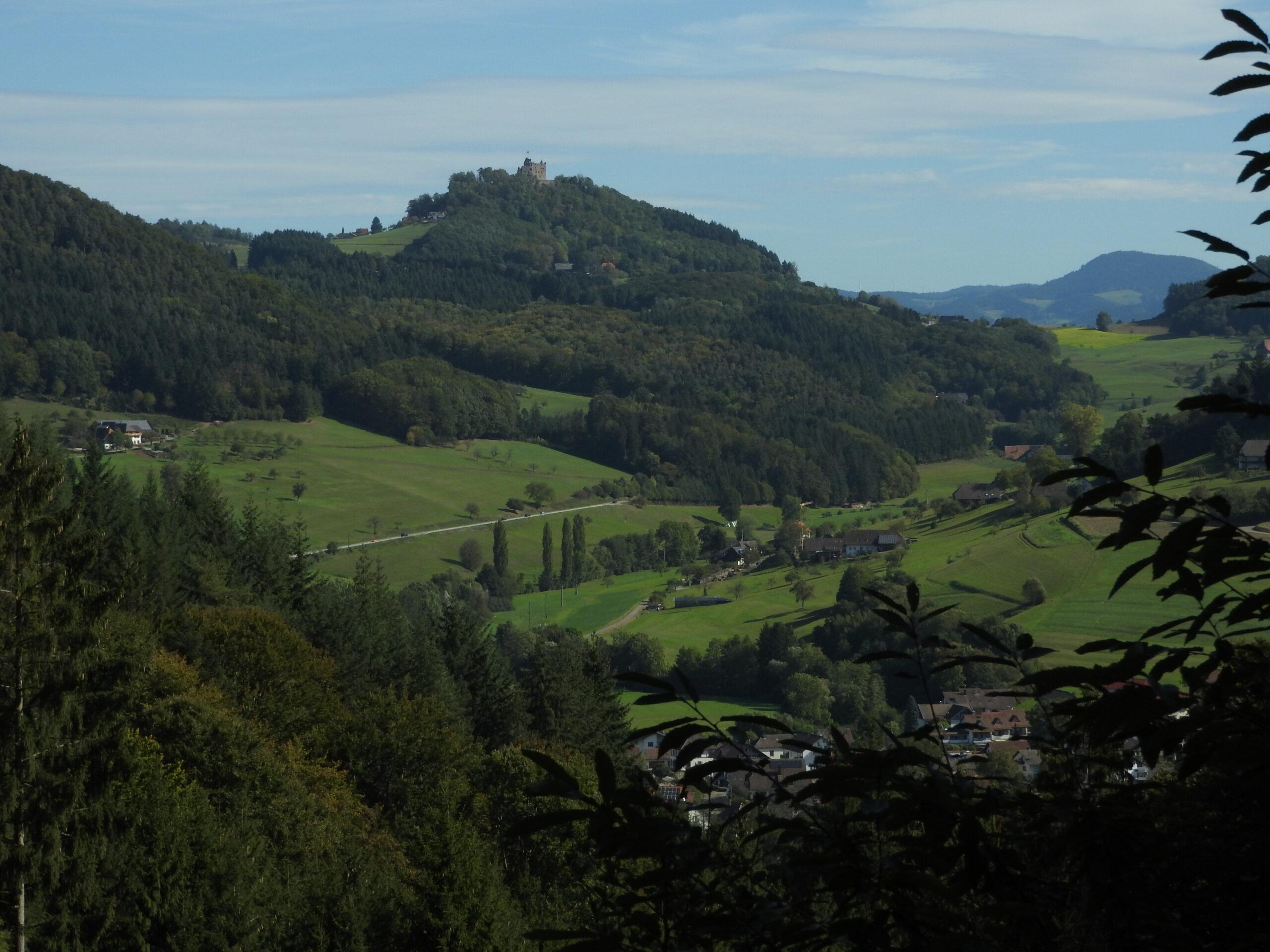 Mountainbiken Schwarzwald